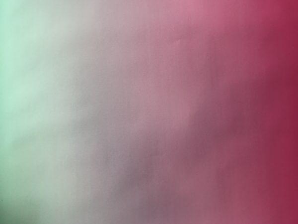 Cadeaupapier Roze - Groen BTS-14