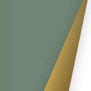 Cadeaupapier Uni Groen en Goud