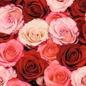 Cadeaupapier Roze Rozen
