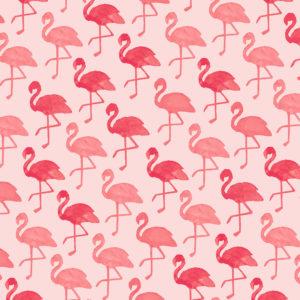 Cadeaupapier Flamingo Roze Consumentenrollen, 6 rollen