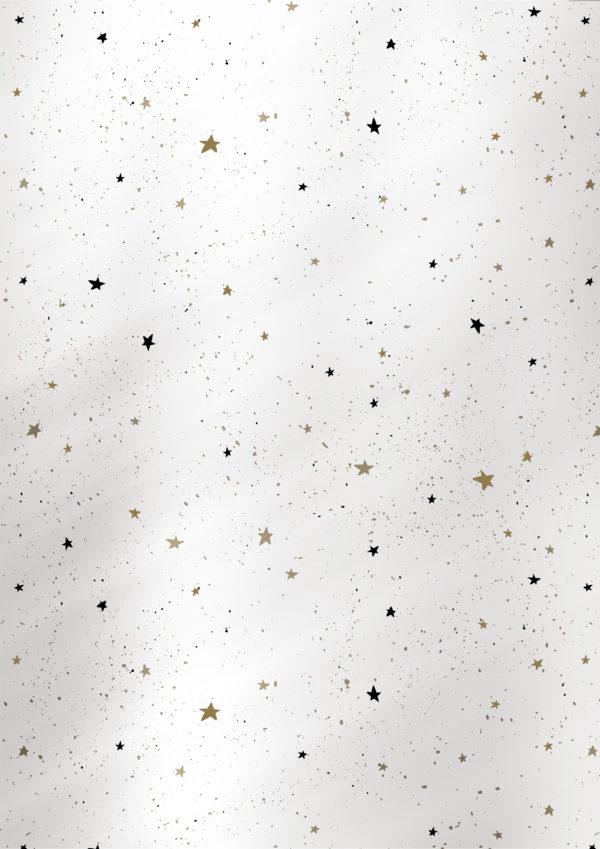 Zilver Kerst kadopapier inpakpapier Sterren