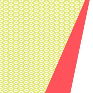 Dubbelzijdig Cadeaupapier Groen Neon Motief