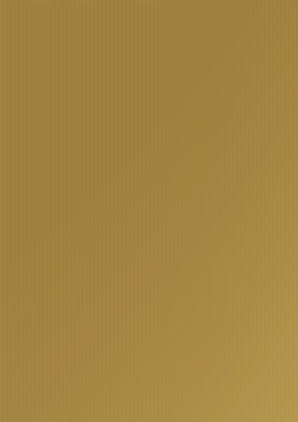 Kraftpapier Milieupapier Goud Uni