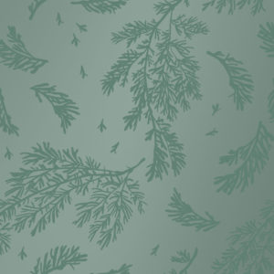 Groen Cadeaupapier met Bladeren Winterleaves