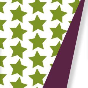 Kerstpapier Groene Sterren Tweezijdig